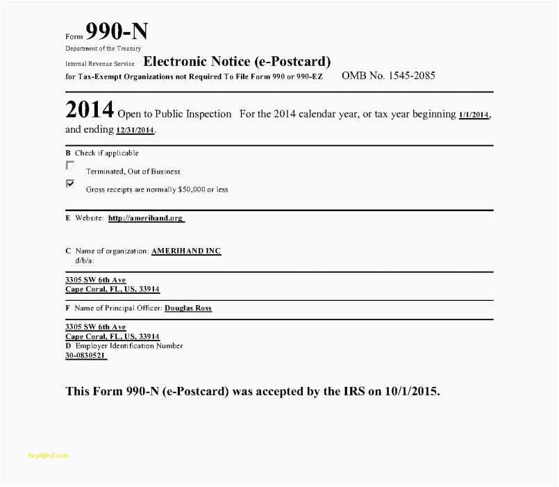 Irs Form 990 Ez Online