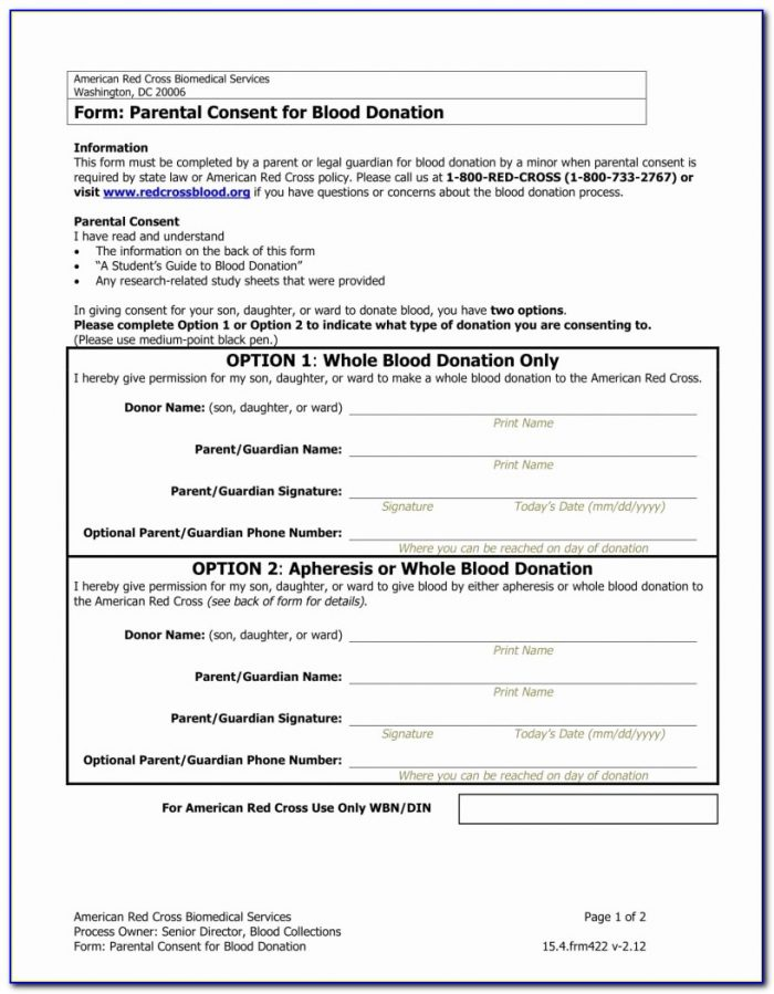 Legal Form For Child Guardianship Free