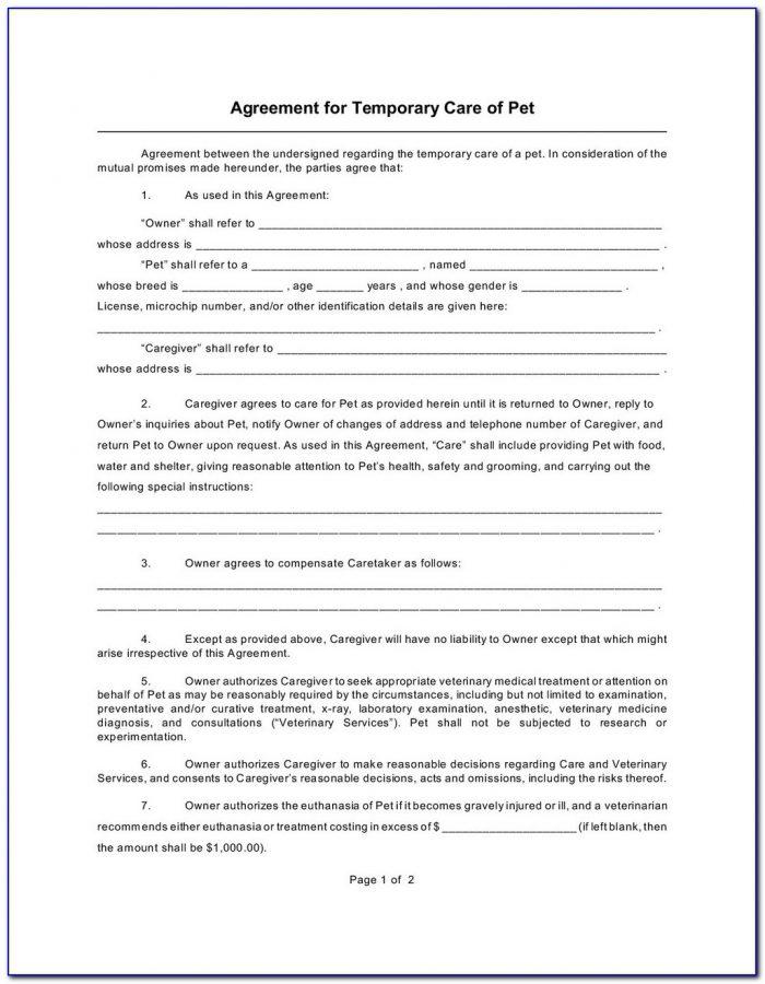 Permanent Guardianship Form Texas