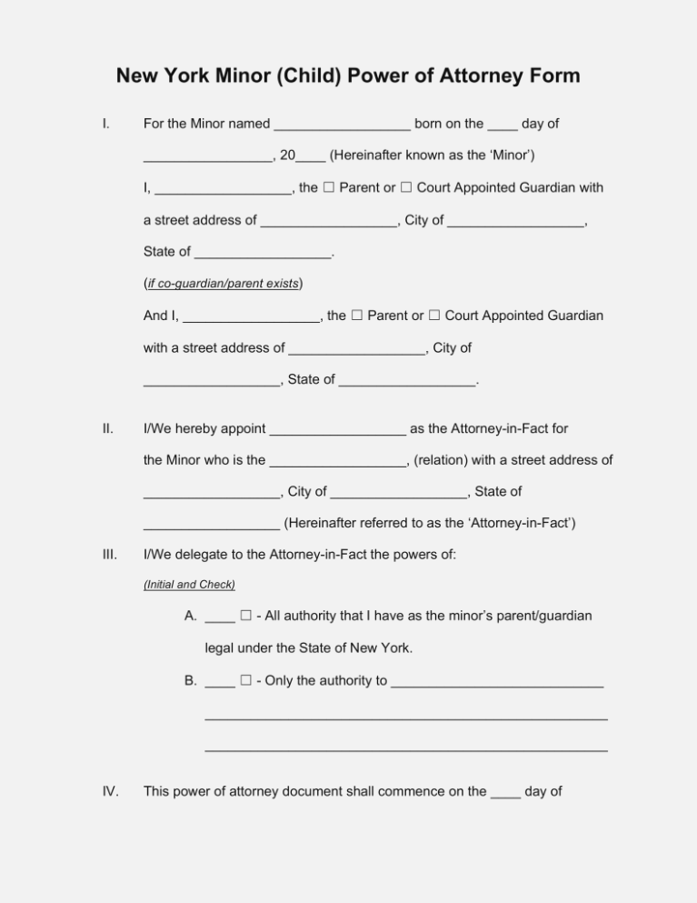 Power Of Attorney Child Guardianship Form