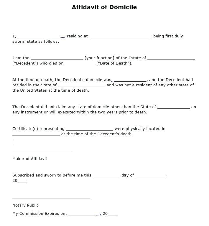 Sample Affidavit Form South Africa