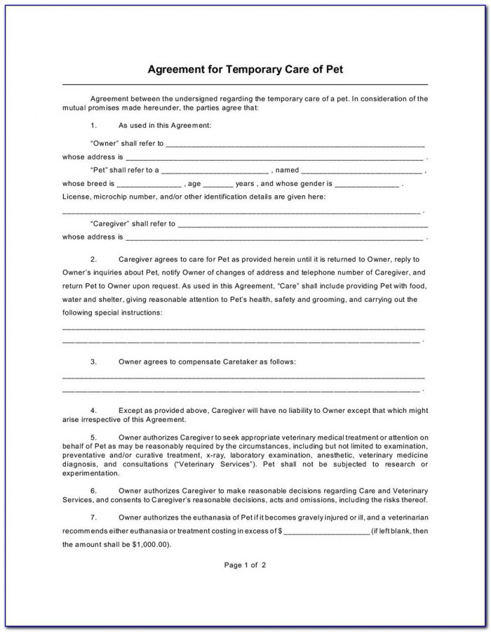 Standby Guardianship Form Texas
