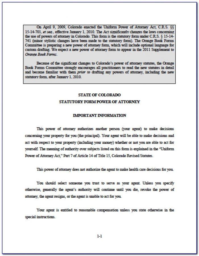 Statutory Power Of Attorney Form Hawaii