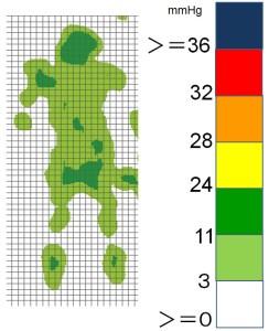 図1 原理発現時の体圧特性