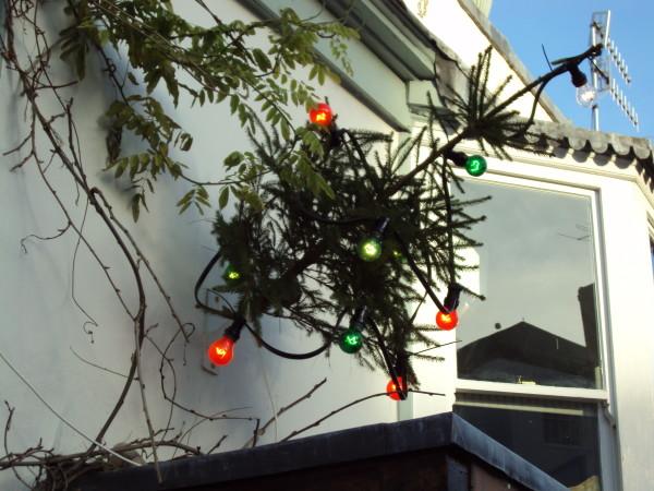 ChristmasTreeOutside