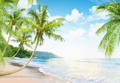 Climat : l'avenir appartient aux tropiques…