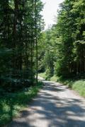 Jakobsweg09