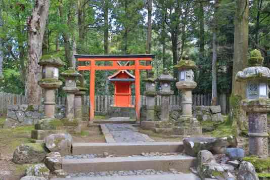 ShrineForestNara