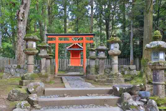 ShrineForestNara