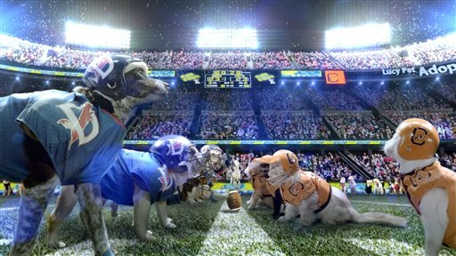 Super Bowl Ad Pits Cats Vs Dogs For A Cause The Daily