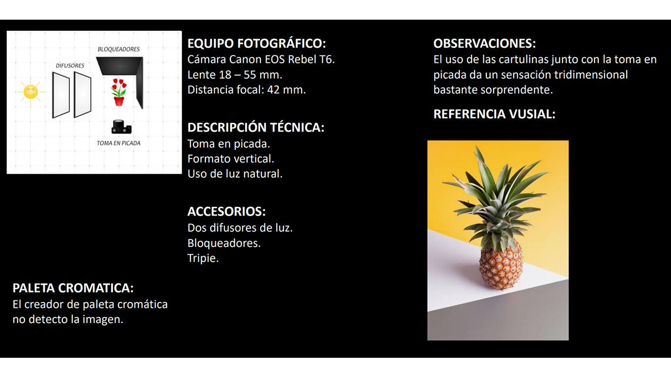 expo-virtual-agosto-2020-fotografia_0000s_0001_01 - Perspectiva Frutas - Preproducción