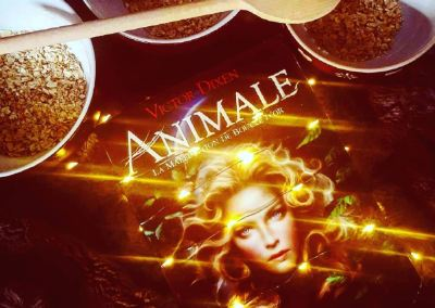Animale – Avis