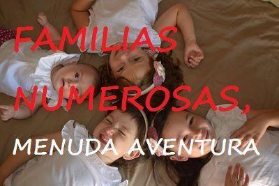 familias-numerosas-menuda-aventura