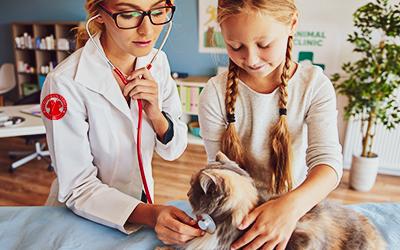 Energia & Nutrição Pet