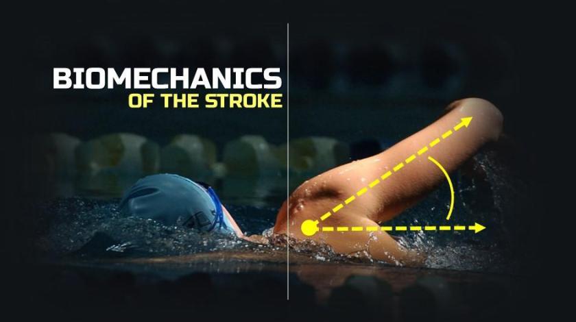 Efficient Swim Stroke