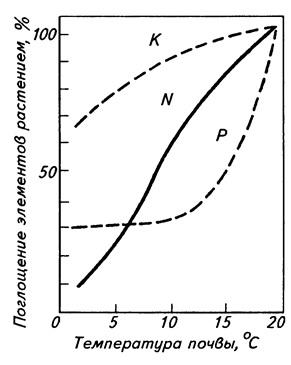Влияние температуры на поступление питательных элементов в растения