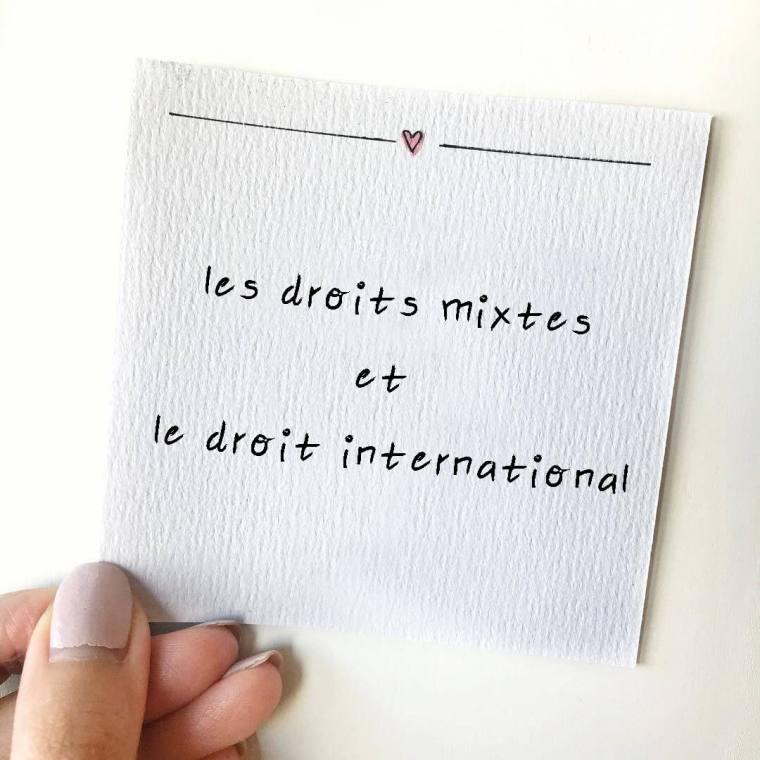les droits mixtes et le droit international