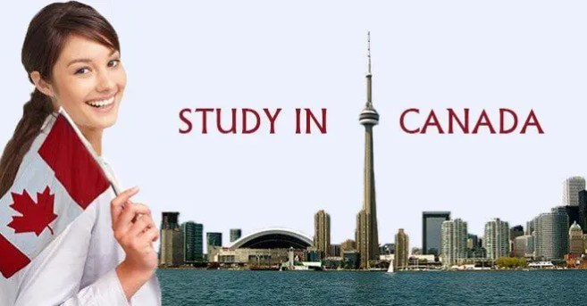 Image result for What are the top 7 courses to study in Canada?