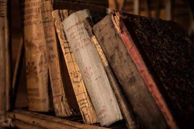 libros-viejos-protegerlos-contra-hongos-insectos