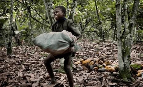 bambino solleva sacco di cacao