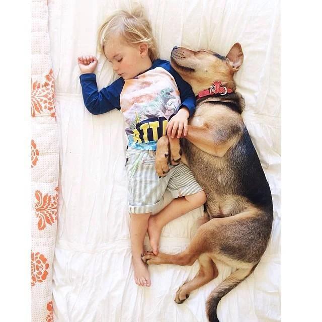 bimbo e cane dormono