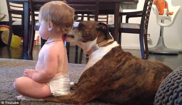 bimba e cane