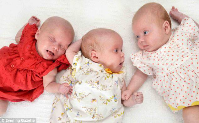 gemelline insieme