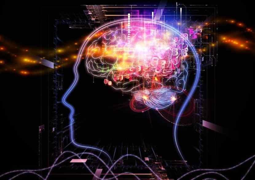 La meditación modifica nuestro cerebro