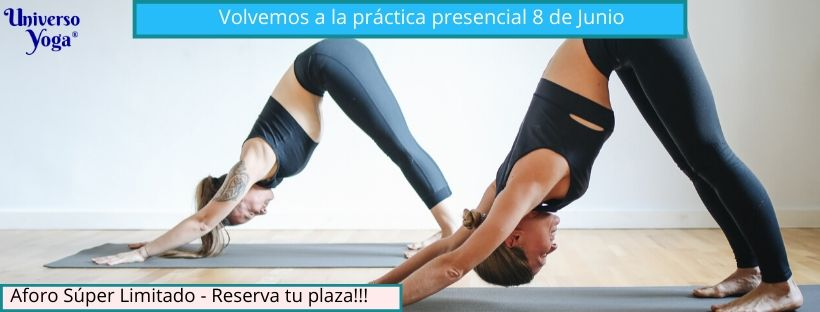 volvemos a la práctica de yoga  presencial