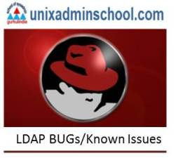 LDAP Known issues and Bugs