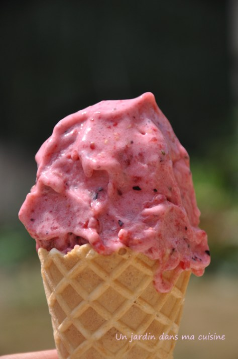 glace_ maison_redimenssion_wordpress_ copie