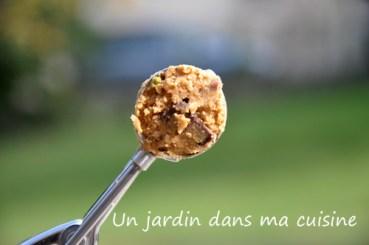 cookies_2_un_jardin_dans_ma_cuisine_