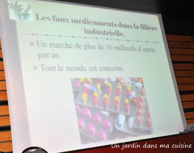 Un_jardin_dans_ma_cuisine_17