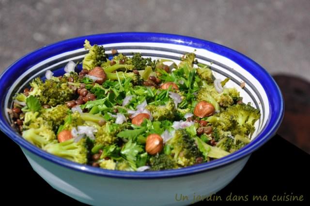 salade de lentilles au brocoli un jardin dans ma cuisine