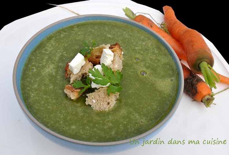 soupe de fanes de carottes un jardin dans ma cuisine