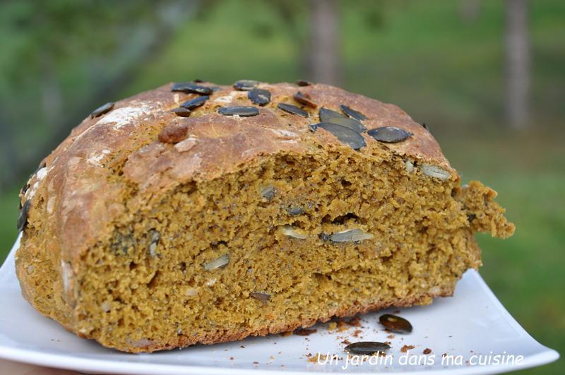 pain cocotte courge olives et ses petites graines