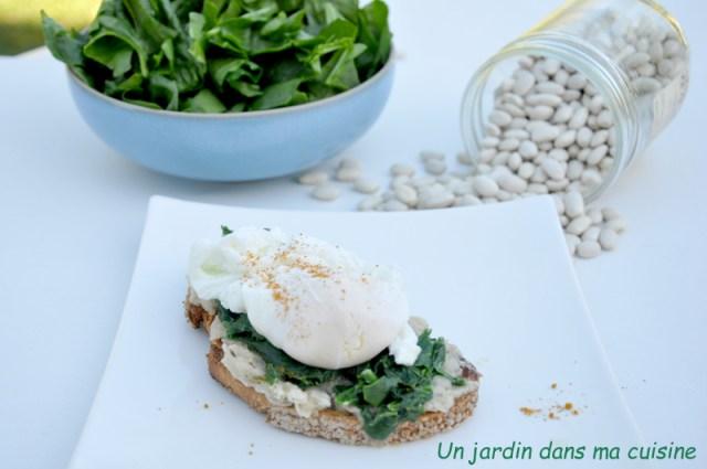 tartine haricots blancs épinards œuf poché