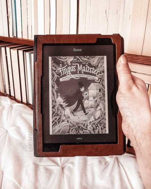 Fingus Malister ebook Ariel Holzl