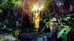 神様と仏様の違いって何