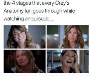 Funny Greys Anatomy Memes: 20 Memes about True Fans, Anatomy Season, Meredith Grey, Cristina Yang