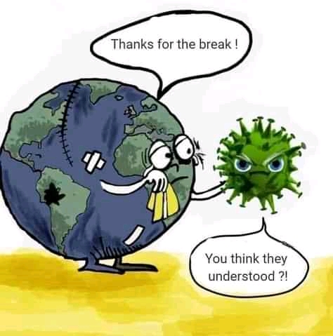 18 Earth Day Funny Quotes and memes