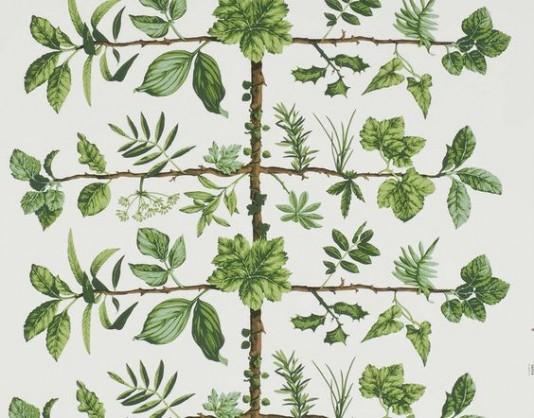 wallpaper-pierrefrey