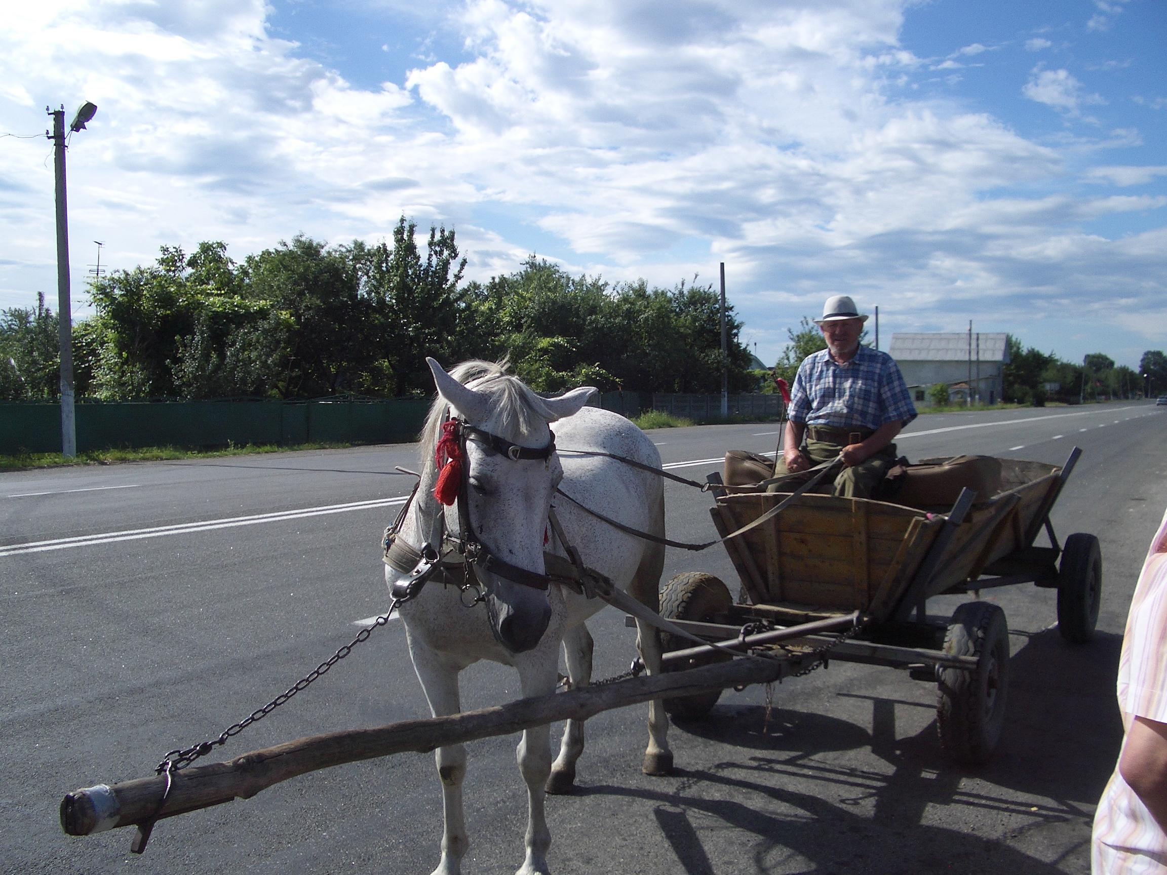 Farmer on the road
