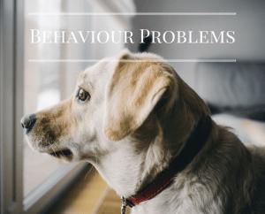 behaviour problems