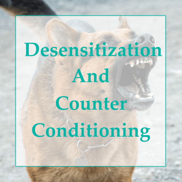 Counter Conditioning and Desensitization