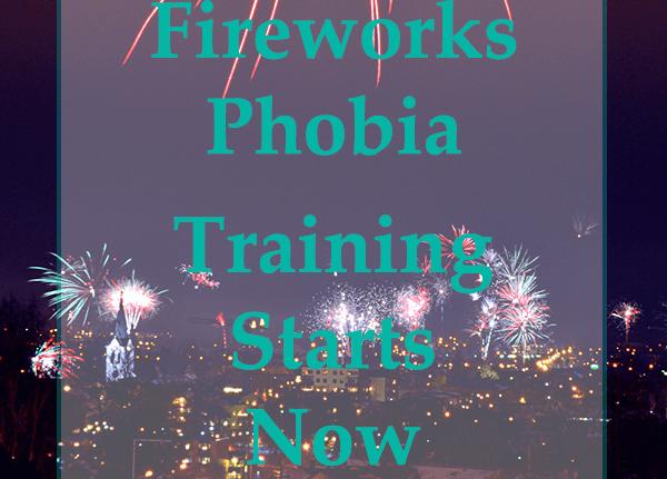 Fireworks Phobia – Training Starts Now!!