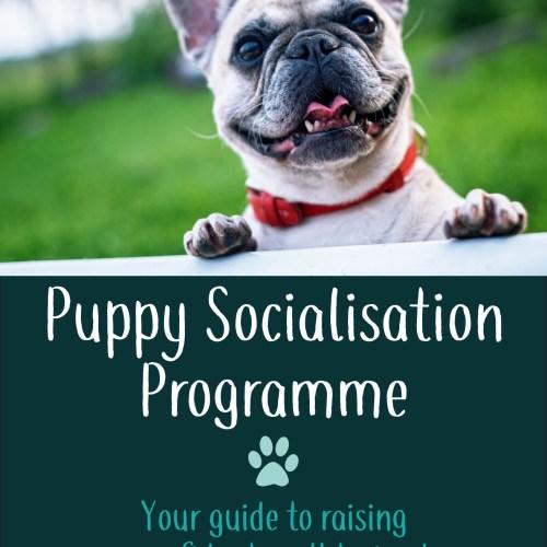 puppy socialisation booklet