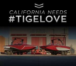 tige-auction