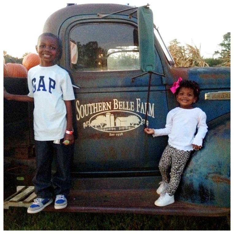 Southern Belle Farm III