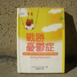 Chinese Edition Of My Book, Healing Depression
